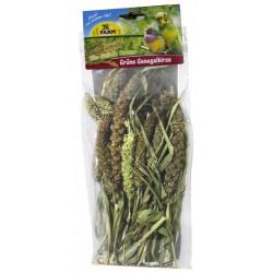 JR Farm Groene Senegalese gierst