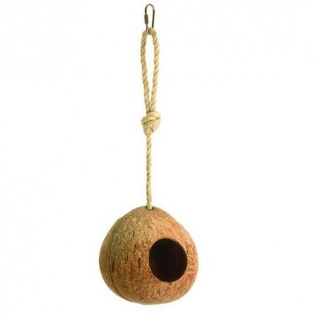 Kokosnoot hangend