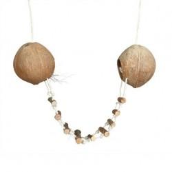 Kokosnoten hangbrug