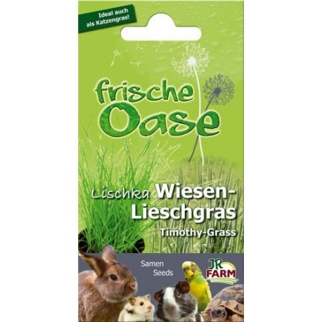 Frische Oase Timothy grass