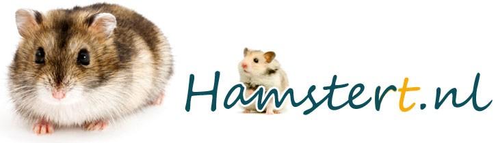 Hamstert.nl